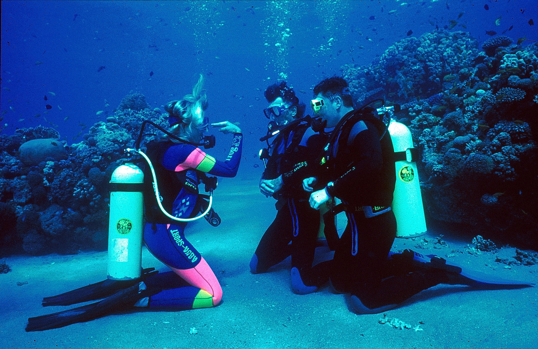 Padi Open Water Course Anchor Diving Malta
